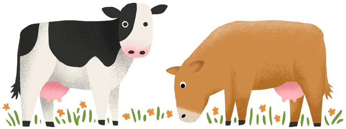 An illustration of cows eating grass