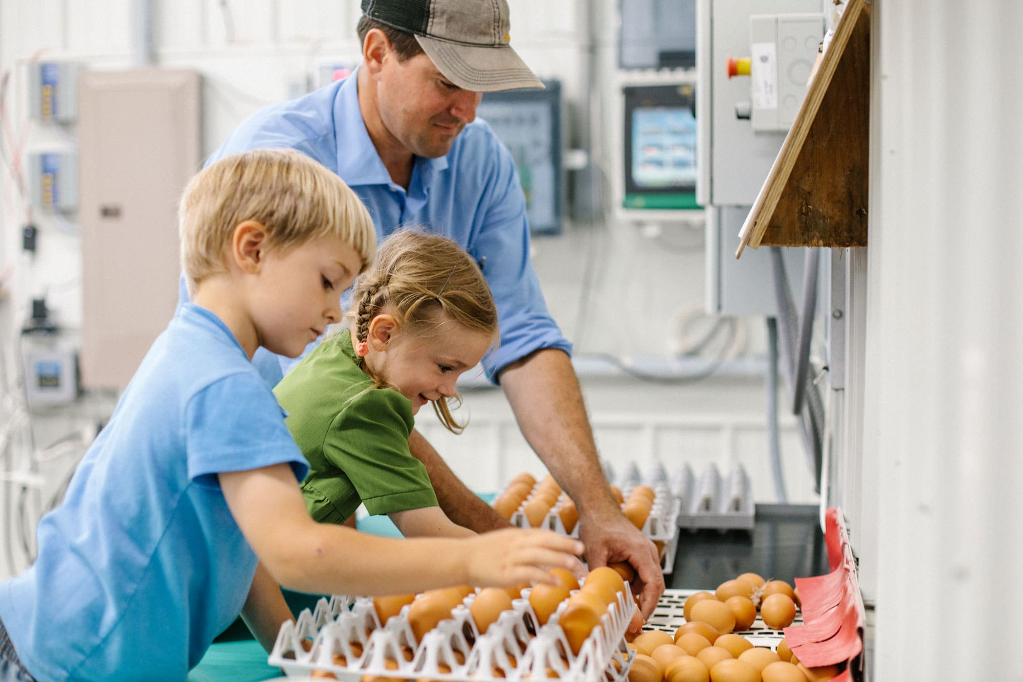 A male farmer helping a boy and a girl put eggs in cartons in a very clean, high tech looking room.