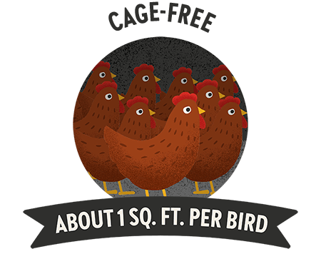 Cage free means about 1 sq foot per bird.